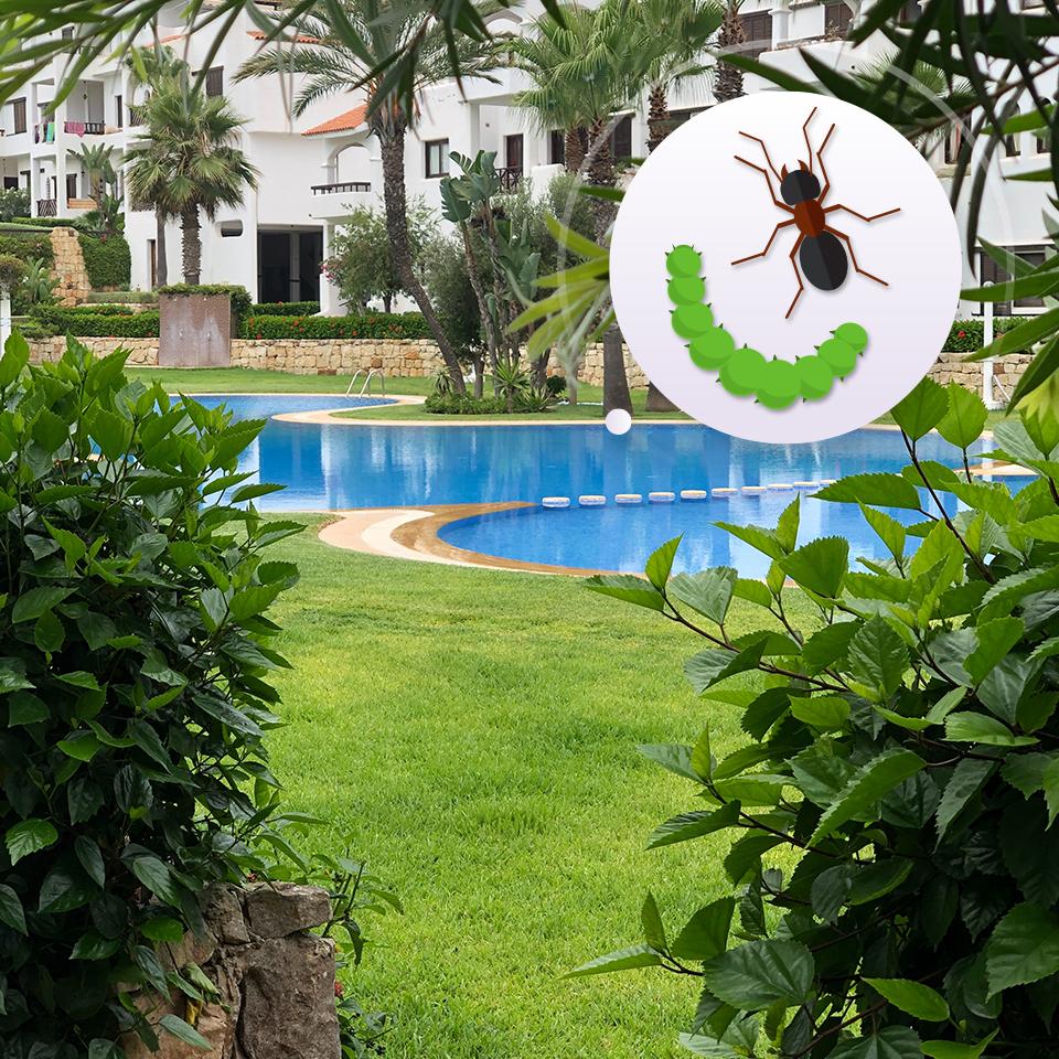 Servicios-Residenciales_jardin